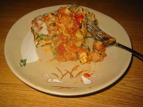 lasagna piece