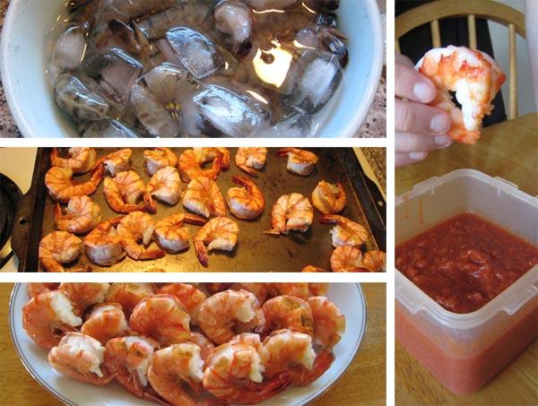 shrimp transformation