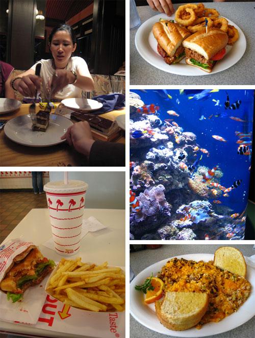 trip food 2